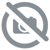 SAGEMCOM DECT duo D182 couleur sable
